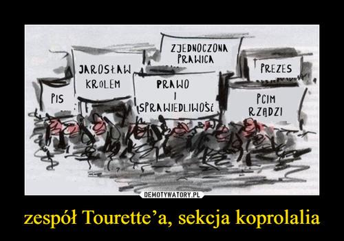 zespół Tourette'a, sekcja koprolalia