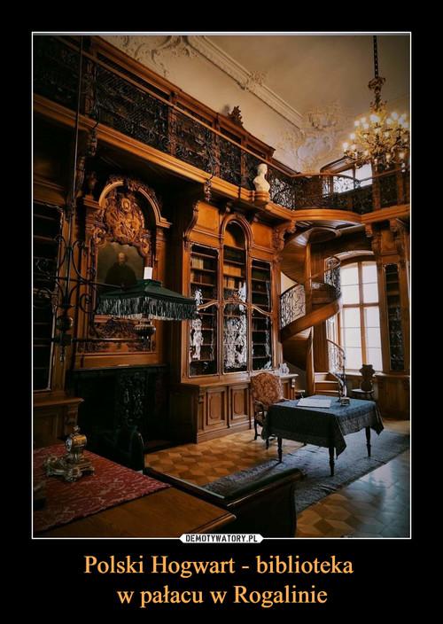 Polski Hogwart - biblioteka  w pałacu w Rogalinie