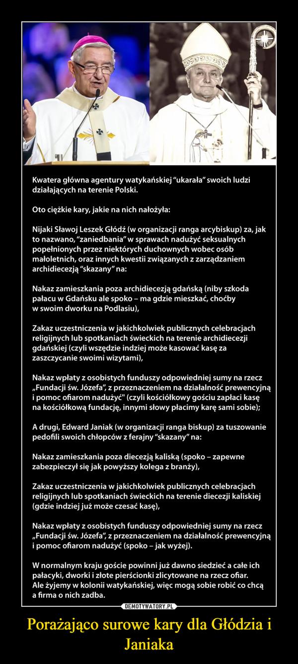 Porażająco surowe kary dla Głódzia i Janiaka –