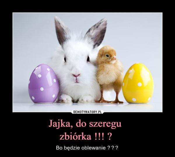 Jajka, do szeregu  zbiórka !!!  – Bo będzie oblewanie