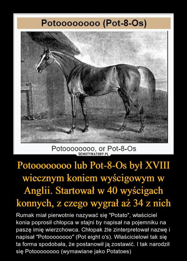"""Potoooooooo lub Pot-8-Os był XVIII wiecznym koniem wyścigowym w Anglii. Startował w 40 wyścigach konnych, z czego wygrał aż 34 z nich – Rumak miał pierwotnie nazywać się """"Potato"""", właściciel konia poprosił chłopca w stajni by napisał na pojemniku na paszę imię wierzchowca. Chłopak źle zinterpretował nazwę i napisał """"Potoooooooo"""" (Pot eight o's). Właścicielowi tak się ta forma spodobała, że postanowił ją zostawić. I tak narodził się Potoooooooo (wymawiane jako Potatoes)"""