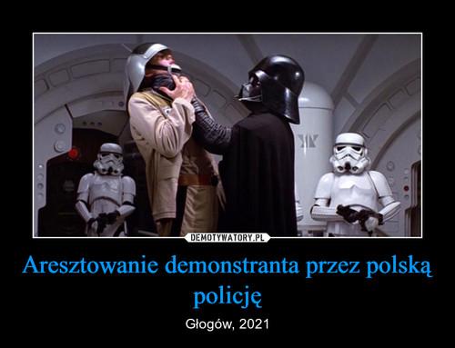 Aresztowanie demonstranta przez polską policję