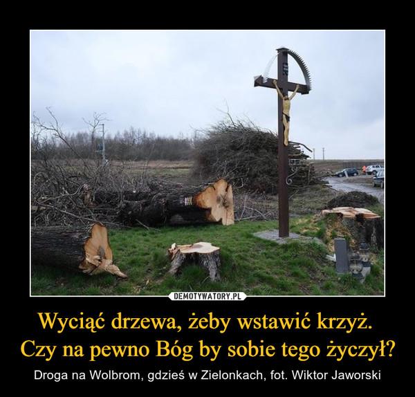 Wyciąć drzewa, żeby wstawić krzyż. Czy na pewno Bóg by sobie tego życzył? – Droga na Wolbrom, gdzieś w Zielonkach, fot. Wiktor Jaworski