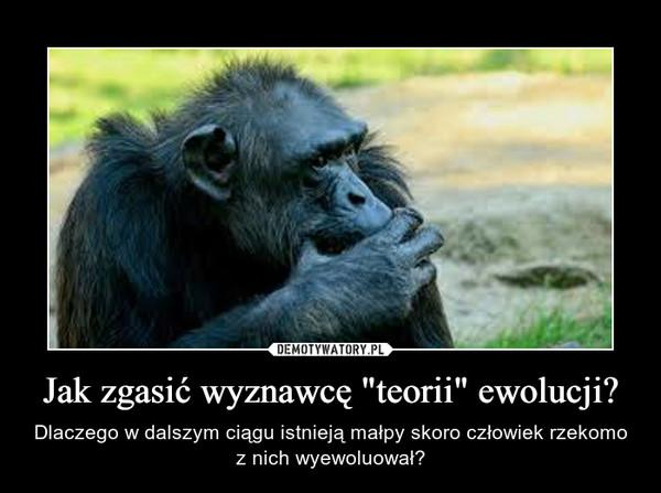 """Jak zgasić wyznawcę""""teorii"""" ewolucji? – Dlaczego w dalszym ciągu istniejąmałpy skoro człowiek rzekomo z nich wyewoluował?"""