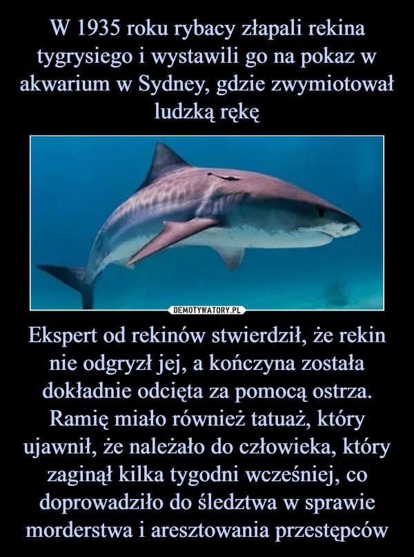 Ekspert od rekinów stwierdził, że rekin nie odgryzł jej, a kończyna została dokładnie odcięta za pomocą ostrza. Ramię miało również tatuaż, który ujawnił, że należało do człowieka, który zaginął kilka tygodni wcześniej, co doprowadziło do śledztwa w sprawie morderstwa i aresztowania przestępców –