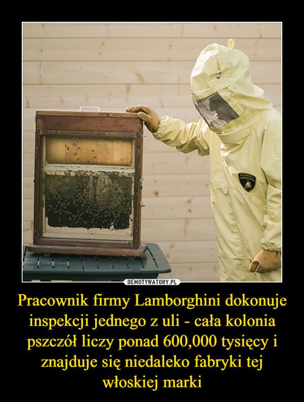 Pracownik firmy Lamborghini dokonuje inspekcji jednego z uli - cała kolonia pszczół liczy ponad 600,000 tysięcy i znajduje się niedaleko fabryki tej włoskiej marki –