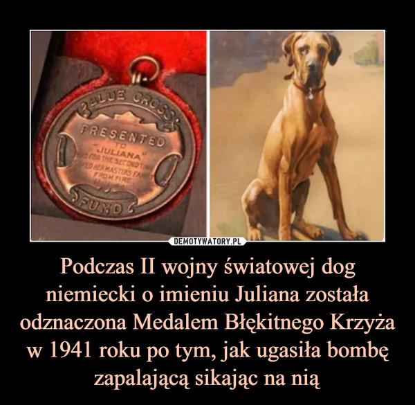Podczas II wojny światowej dog niemiecki o imieniu Juliana została odznaczona Medalem Błękitnego Krzyża w 1941 roku po tym, jak ugasiła bombę zapalającą sikając na nią