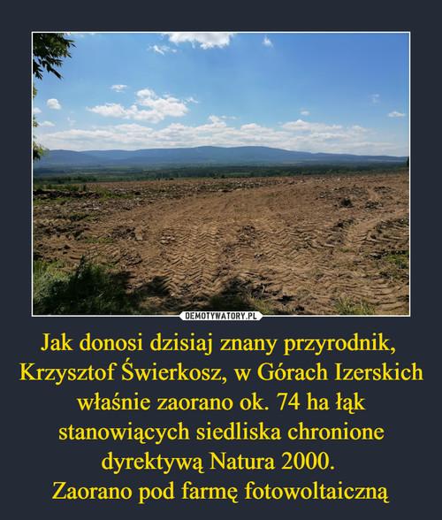 Jak donosi dzisiaj znany przyrodnik,  Krzysztof Świerkosz, w Górach Izerskich właśnie zaorano ok. 74 ha łąk stanowiących siedliska chronione dyrektywą Natura 2000.  Zaorano pod farmę fotowoltaiczną