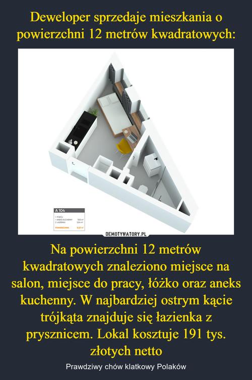 Deweloper sprzedaje mieszkania o powierzchni 12 metrów kwadratowych: Na powierzchni 12 metrów kwadratowych znaleziono miejsce na salon, miejsce do pracy, łóżko oraz aneks kuchenny. W najbardziej ostrym kącie trójkąta znajduje się łazienka z prysznicem. Lokal kosztuje 191 tys. złotych netto