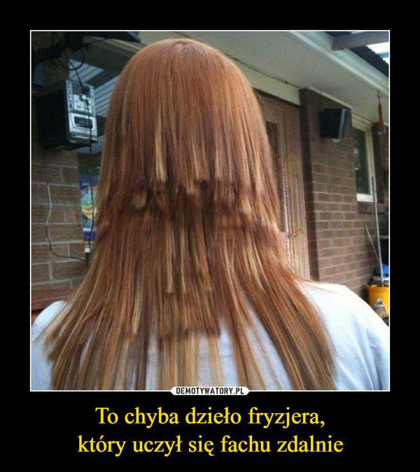 To chyba dzieło fryzjera,który uczył się fachu zdalnie –