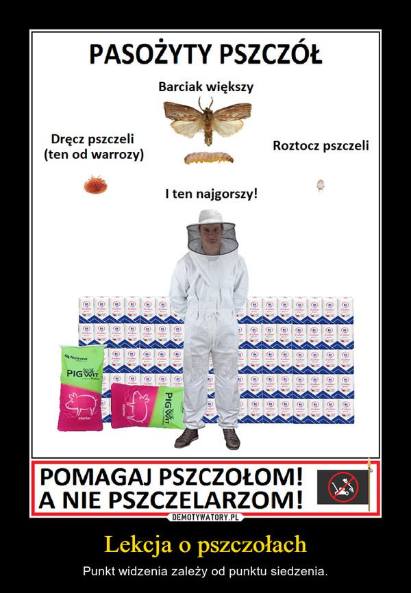 Lekcja o pszczołach – Punkt widzenia zależy od punktu siedzenia.