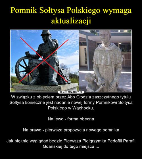 Pomnik Sołtysa Polskiego wymaga aktualizacji