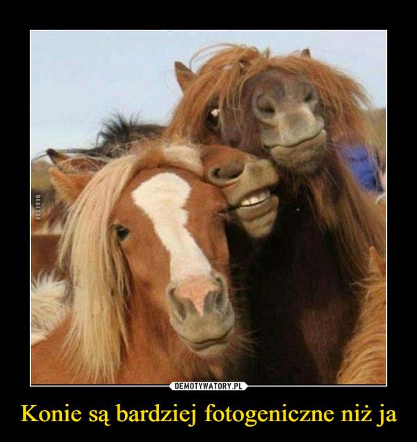 Konie są bardziej fotogeniczne niż ja –