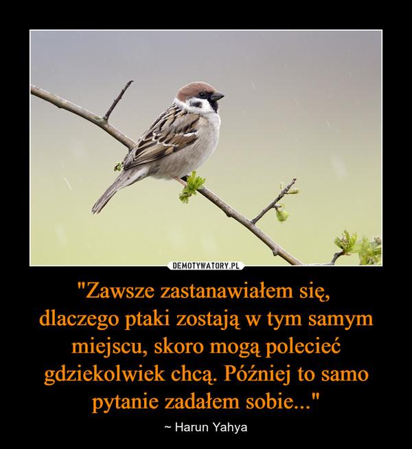 """""""Zawsze zastanawiałem się, dlaczego ptaki zostają w tym samym miejscu, skoro mogą polecieć gdziekolwiek chcą. Później to samo pytanie zadałem sobie..."""" – ~ Harun Yahya"""
