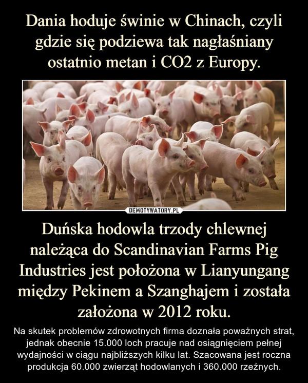 Duńska hodowla trzody chlewnej należąca do Scandinavian Farms Pig Industries jest położona w Lianyungang między Pekinem a Szanghajem i została założona w 2012 roku. – Na skutek problemów zdrowotnych firma doznała poważnych strat, jednak obecnie 15.000 loch pracuje nad osiągnięciem pełnej wydajności w ciągu najbliższych kilku lat. Szacowana jest roczna produkcja 60.000 zwierząt hodowlanych i 360.000 rzeźnych.