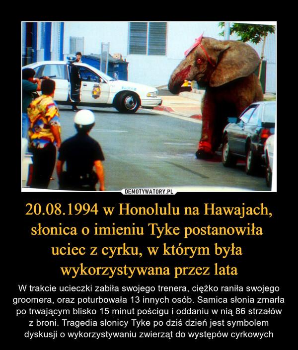 20.08.1994 w Honolulu na Hawajach, słonica o imieniu Tyke postanowiła uciec z cyrku, w którym była wykorzystywana przez lata – W trakcie ucieczki zabiła swojego trenera, ciężko raniła swojego groomera, oraz poturbowała 13 innych osób. Samica słonia zmarła po trwającym blisko 15 minut pościgu i oddaniu w nią 86 strzałów z broni. Tragedia słonicy Tyke po dziś dzień jest symbolem dyskusji o wykorzystywaniu zwierząt do występów cyrkowych