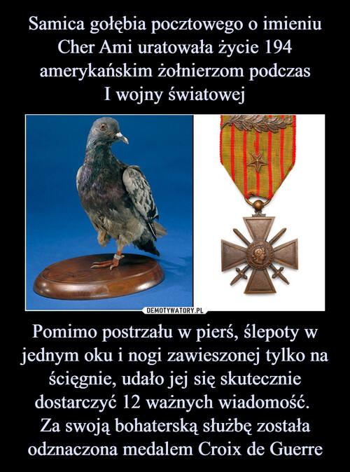 Samica gołębia pocztowego o imieniu Cher Ami uratowała życie 194 amerykańskim żołnierzom podczas I wojny światowej Pomimo postrzału w pierś, ślepoty w jednym oku i nogi zawieszonej tylko na ścięgnie, udało jej się skutecznie dostarczyć 12 ważnych wiadomość.  Za swoją bohaterską służbę została odznaczona medalem Croix de Guerre