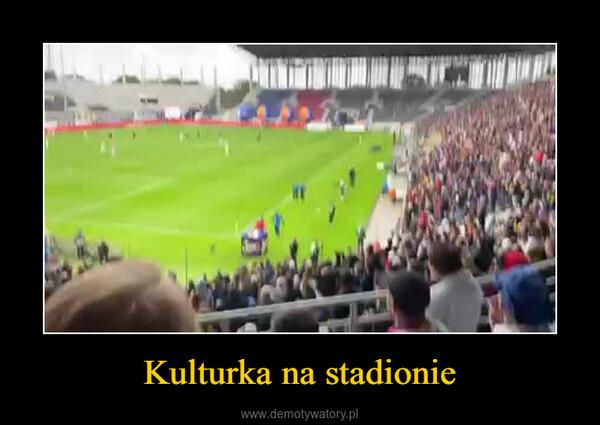 Kulturka na stadionie –