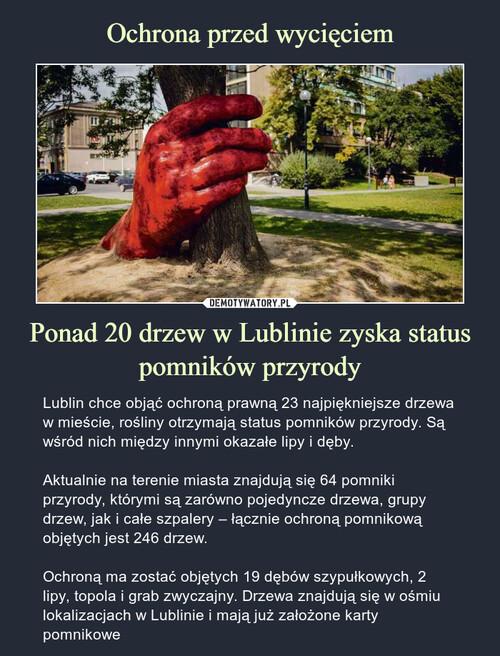 Ochrona przed wycięciem Ponad 20 drzew w Lublinie zyska status pomników przyrody